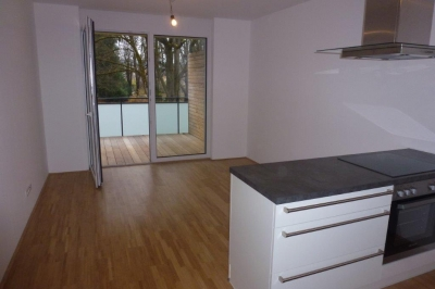 http://www.nuesslein-immobilien.at/data/image/thumpnail/image.php?image=200/nuesslein_immobilien_article_3944_1.jpg&width=400