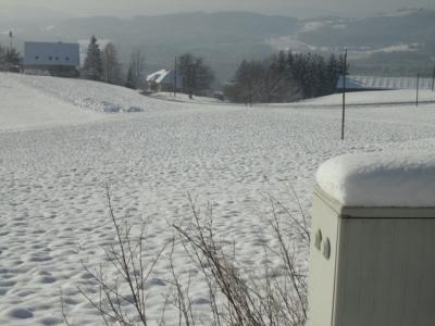 http://www.nuesslein-immobilien.at/data/image/thumpnail/image.php?image=200/nuesslein_immobilien_article_3958_1.jpg&width=400